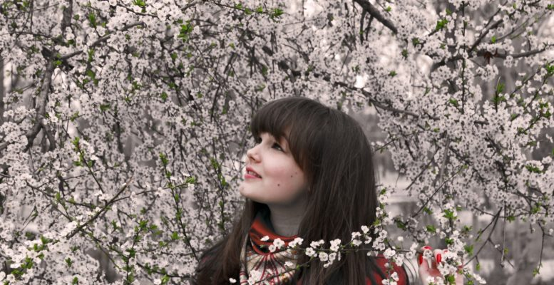 Japonya Sakura Zamanı