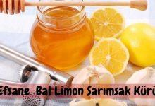 Bal, Limon, Sarımsak ve Karbonat Mucizesi 6