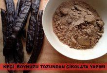 Keçiboynuzu Tozundan Çikolata Nasıl Yapılır? 5