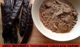 Keçiboynuzu Tozundan Çikolata Nasıl Yapılır? 1