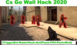 Cs Go Wall Hack 2020 - 2021 TriggerBot-Radar Hack AntiFlash-FOV-Panic Mode 8