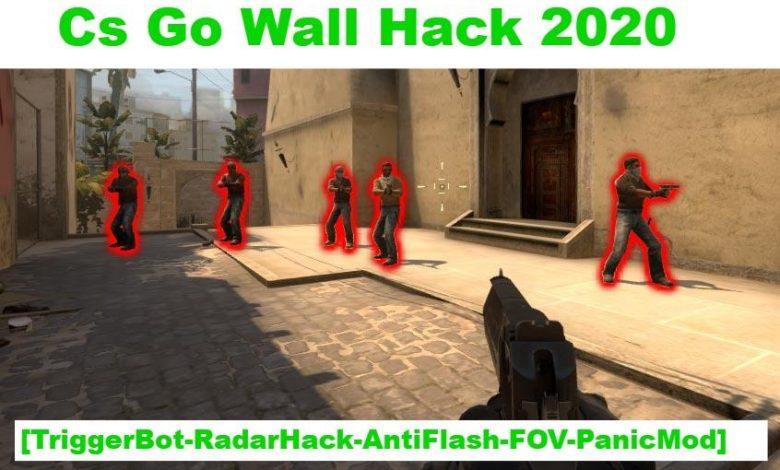 Cs Go Wall Hack 2020 - 2021 TriggerBot-Radar Hack AntiFlash-FOV-Panic Mode 1