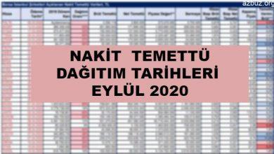 Nakit Temettü Dağıtım Tarihleri Eylül 2020 / 1 3