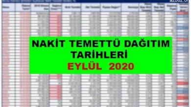 Nakit Temettü Dağıtım Tarihleri Eylül 2020 2