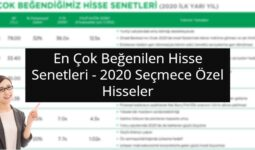 2020 Seçmece Özel Hisseler - 2020 Türkiye Strateji Raporu 1