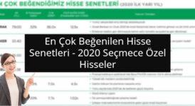 2020 Seçmece Özel Hisseler - 2020 Türkiye Strateji Raporu 3