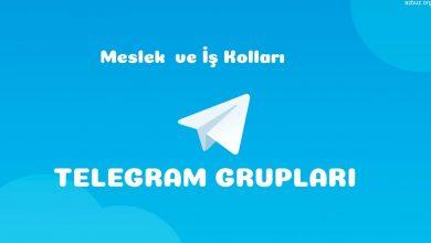 Meslek ve İş Telegram grupları 1