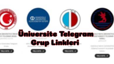 Üniversitelerin Telegram Grupları 19